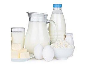 Кисло-молочную продукцию можно приготовить дома с помощью сыроварни Бергманн